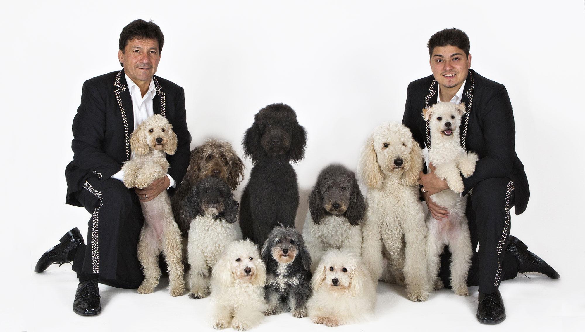 OLATE DOGS  <h5>September 16  </h5>